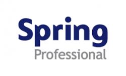 Spring Professionals